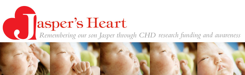 Jasper's Heart | CHD Research Funding and Awarenes